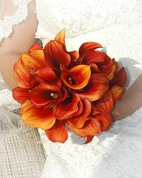 Choosing Orange Among Your Wedding Colors Means You Are Independent And Competitive Assertive Extroverted Uninhibited Always On The Go